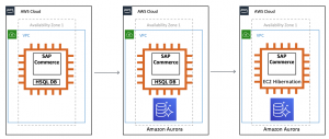 Driving new levels of agility for your SAP workloads: an example with SAP Commerce