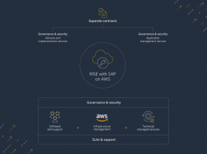 Your ERP environment, your choice: RISE with SAP presents another ERP modernization path for AWS customers